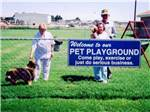 View larger image of Dog exercise area at MIDESSA OIL PATCH RV PARK image #4