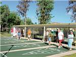 View larger image of Shuffleboard courts at SHERWOOD FOREST RV RESORT image #6