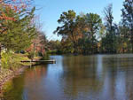 View larger image of Lake view at SHADY GROVE CAMPGROUND image #1