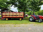 View larger image of People being pulled by a tractor at PLEASANT ACRES FARM RV RESORT image #3