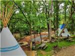 View larger image of Rental tipis surrounded by trees at GREENBRIER CAMPGROUND image #6