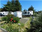 View larger image of Trailers and RVs camping at NETARTS BAY GARDEN RV RESORT image #2