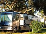 View larger image of RV camping at SUN-N-FUN RV RESORT image #3