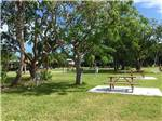 View larger image of Picnic tables at JOLLY ROGER RV RESORT image #11
