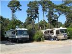 View larger image of 2 RVs parked in sites at POMO RV PARK  CAMPGROUND image #3