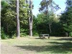 View larger image of Large open grassy campsite with wooden picnic table at POMO RV PARK  CAMPGROUND image #6
