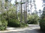 POMO RV PARK  CAMPGROUND at FORT BRAGG CA
