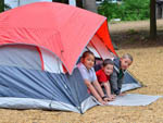View larger image of Tent camping at PINE ACRES FAMILY CAMPING RESORT image #4