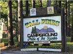 View larger image of Trailer camping at TALL PINES CAMPGROUND image #1