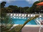 DUNEDIN RV RESORT at DUNEDIN FL