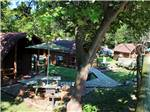 View larger image of View of cabins with picnic tables at MUSICLAND KAMPGROUND image #12