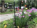 View larger image of HOPE OAK KNOLL CAMPGROUND at OWATONNA MN image #3