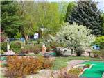 View larger image of Yogis miniature golf course at YOGI BEARS JELLYSTONE PARK CAMP-RESORT image #6