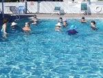 View larger image of People swimming in the pool at BENTSEN GROVE RESORT MHP image #4