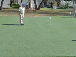 View larger image of Putting green at BENTSEN GROVE RESORT MHP image #6
