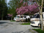 View larger image of RVs camping at HAZELMERE RV PARK image #6