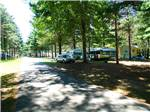 View larger image of Airstream and cabin along a paved tree lined road at TWIN MILLS RV RESORT image #2