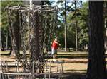 View larger image of Frisbee golf at NEWPORT NEWS PARK CAMPGROUND image #4