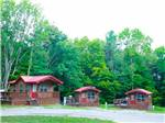 View larger image of Separate blue and yellow umbrellas between two of the pools at BISSELLS HIDEAWAY RESORT image #4