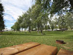 View larger image of Grassy area lined with trees and picnic tables at MILTON HEIGHTS CAMPGROUND image #7