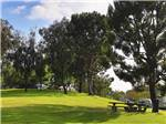 View larger image of Two tents on top of a hill on the green grass at BONELLI BLUFFS RV RESORT  CAMPGROUND image #12