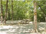View larger image of Three 5th wheels in shady wooded site with red pick up parked nearby at KETTLE CAMPGROUND CABINS  RV PARK image #3