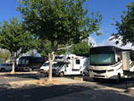 View larger image of RVs camping at CASTAIC LAKE RV PARK image #5