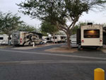 View larger image of Empty paved RV spot at CASTAIC LAKE RV PARK image #7