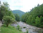 View larger image of YOGI IN THE SMOKIES at CHEROKEE NC image #11