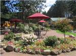 View larger image of Tables and chairs by a flower bed at HAYWARD KOA image #1
