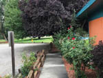 View larger image of Trees and rose bushes at MOORES RV PARK  CAMPGROUND image #6