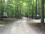 View larger image of Gravel road leading to secluded wooded sites at QUIETWOODS SOUTH CAMPING RESORT image #6