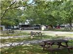 View larger image of A row of wooded RV spaces at SCOTTS FAMILY RV-PARK CAMPGROUND image #2