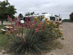 View larger image of RV camping at FORT STOCKTON RV PARK image #6