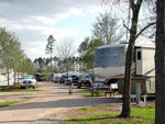 View larger image of Gravel road leading into RV park at LONE STAR JELLYSTONE PARK image #3