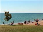 View larger image of Campers sitting at a picnic table next to RVs at CAMPERS COVE CAMPGROUND image #1
