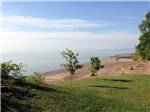 View larger image of Cabins in a grassy treed setting at CAMPERS COVE CAMPGROUND image #2