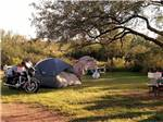 View larger image of Tents camping at TOMBSTONE RV PARK image #5