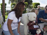 View larger image of Lady with dogs at CHULA VISTA RV RESORT image #10