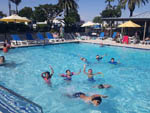 View larger image of Kids swimming at CHULA VISTA RV RESORT image #11