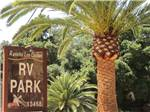 View larger image of Entrance sign among palm trees at RANCHO LOS COCHES RV PARK image #2