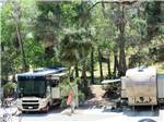 View larger image of Two RVs parked in sites at RANCHO LOS COCHES RV PARK image #9
