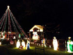 View larger image of Christmas time at MOUNTAIN CREEK CAMPGROUND image #8