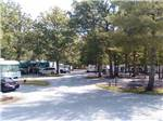 View larger image of RVs and trailers at campground at BEAN POT CAMPGROUND image #2
