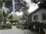 View larger image of Lush greens in front of office at VERO BEACH KAMP image #3