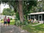 View larger image of BIG TREE RV RESORT at ARCADIA FL image #1