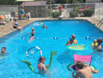 View larger image of People swimming in the pool at GRANDPAS FARM image #1