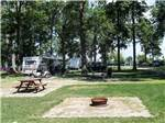 View larger image of Picnic tables and trailers camping at WILLOWOOD RV RESORT image #4