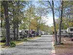 SHADY PINES RV RESORT at GALLOWAY NJ