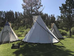 View larger image of Teepees at CROOKED CREEK RESORT  RV PARK image #7